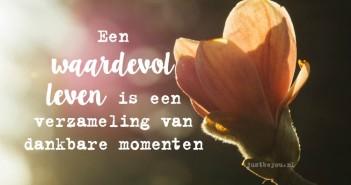 Een waardevol leven is een verzameling van dankbare momenten