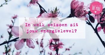 In welk seizoen zit jouw energielevel?