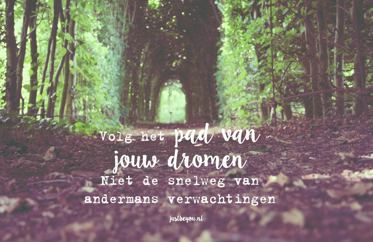 Volg het pad van jouw dromen Niet de snelweg van andermans verwachtingen