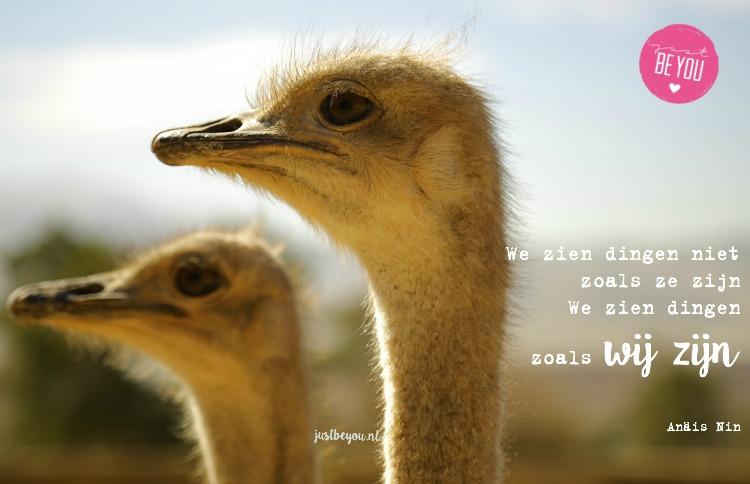 We zien dingen niet zoals ze zijn We zien dingen zoals wij zijn