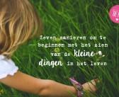 Zeven manieren om te beginnen met het zien van de kleine dingen in het leven