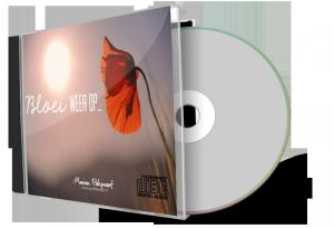 cdcaseblankdisc_800x550