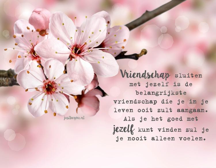 vriendschap sluiten met jezelf